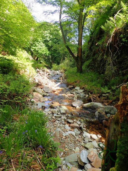 Dhoon Glen river